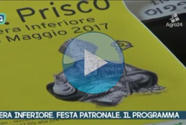 VIDEO – Nocera Inferiore. Salerno. Festa patronale di San Prisco. Il programma