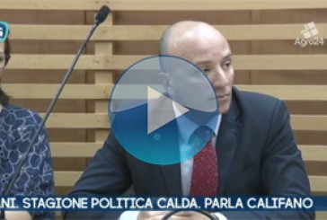 VIDEO – Pagani. Salerno. Accuse dal centro destra. Bernardo Califano replica