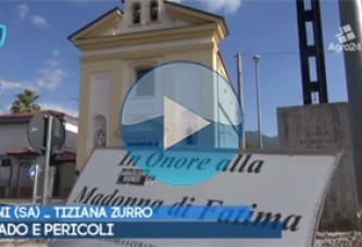VIDEO – Pagani. Salerno. Degrado e pericoli stradali in Via Madonna di Fatima. Pietro Sessa denuncia