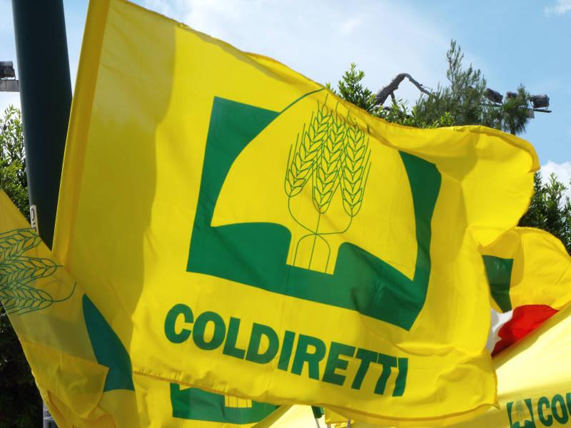 Oltre 2.7 milioni di italiani senza cibo, Coldiretti lancia la