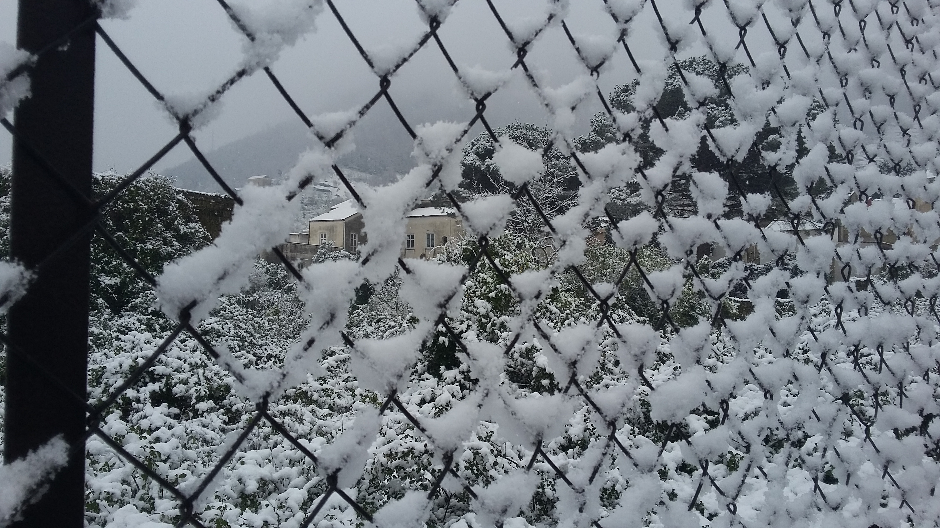 Nuova allerta neve da stasera alle 12 di domani