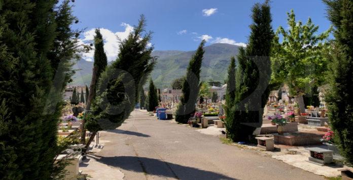 Angri cipressi piegati al cimitero