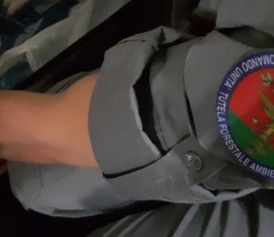 Carabinieri Cites