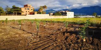 Scafati Fondo agricolo Nappo