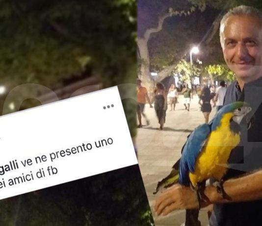 Scafati Salvati con il pappagallo
