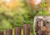 Eco sostenibilità ambiente