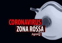 Coronavirus zona rossa mascherine