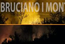 Incendi boschivi monti