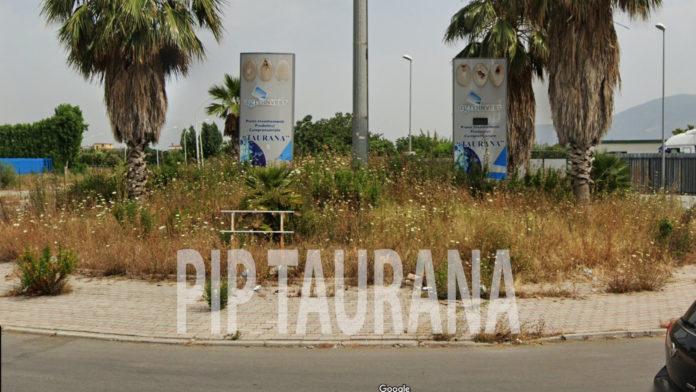 Pip Taurana