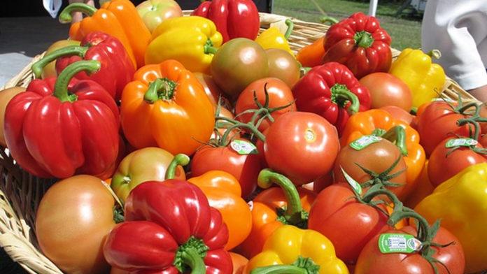 Alimentazione: pomodori e peperoni