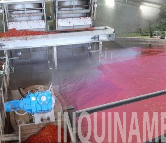 Gori depuratore Sarno inquinamento pomodori