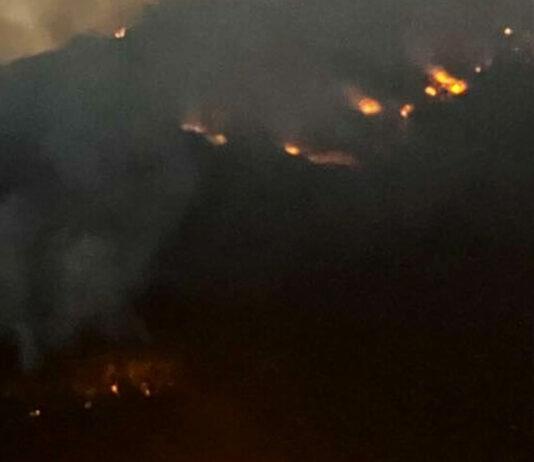 Incendi boschivi 2021